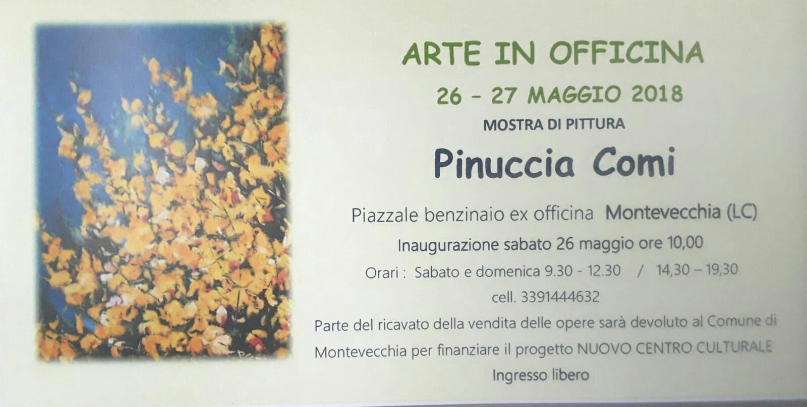 Arte in officina: Pinuccia Comi