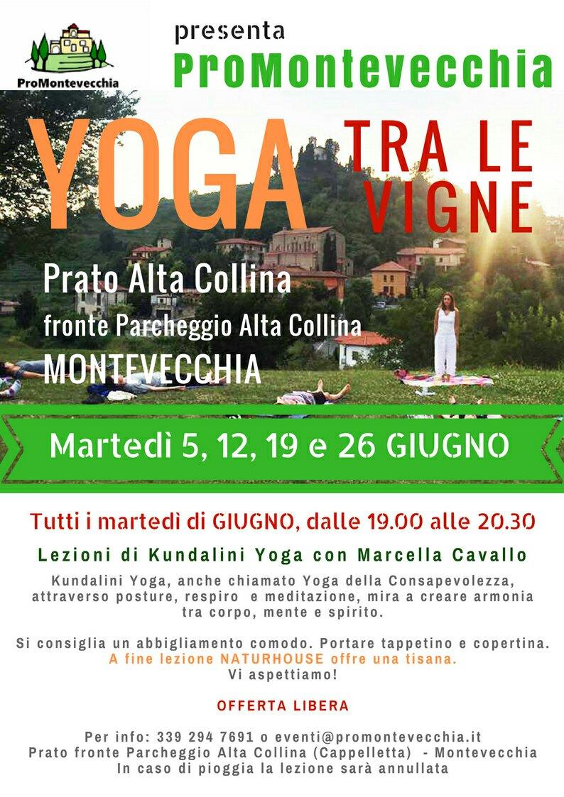 Yoga Tra Le Vigne